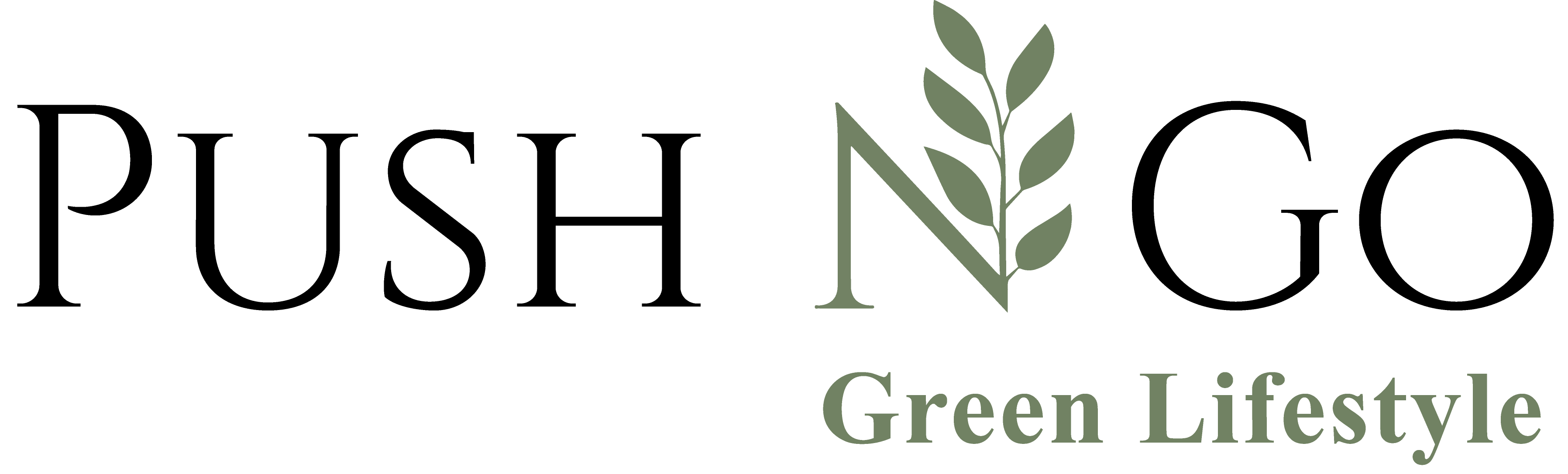 Push N Go – Green Lifestyle